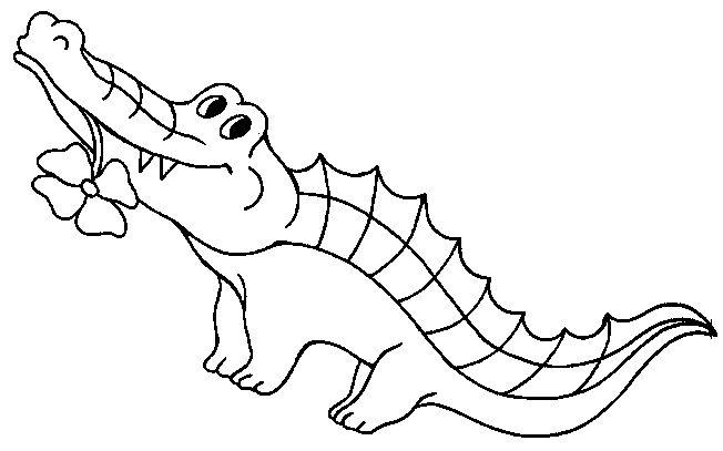 riscos e desenhos desenhos de jacaré para colorir