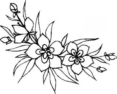 alguns desenhos de flores para pintura em caixinhas, pano de prato