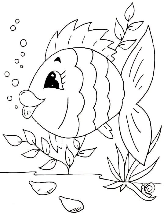desenhos peixes imprimir colorir pintura (1)