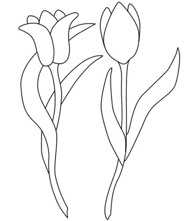 Para Pintura Pano De Prato Riscos De Flores Riscos Para Pintura