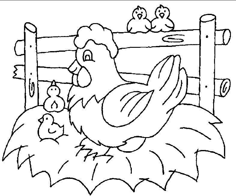 desenhos riscos pintura pano de prato galinha flores frutas (1)