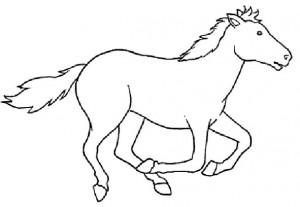 desenhos colorir pintar cavalos (4)