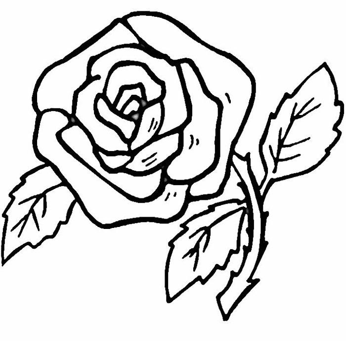 Desenho De Rosas Colouring Pages