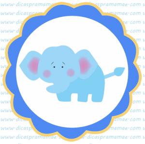 tag aniversario safari elefante