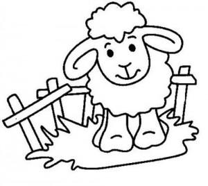 desenhos ovelhinhas colorir atividades escolares criancas (2)