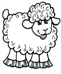 desenhos ovelhinhas colorir atividades escolares criancas (3)