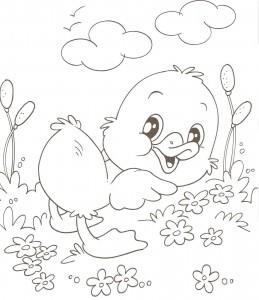 desenhos patinhos imprimir colorir atividades escola criancas (4)